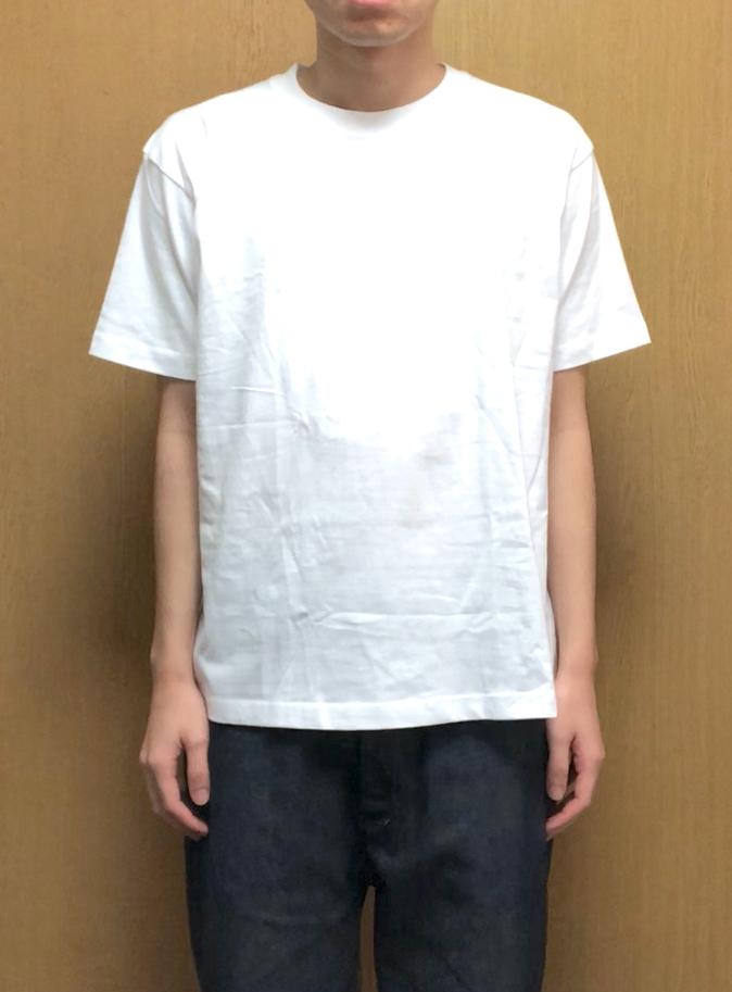 ヘインズ・ビーフィーTシャツのLサイズの新品